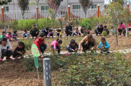 爱护花草树木,以及向幼儿介绍了各种种子的特点及名称,不同功能的种植